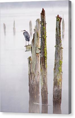 Vancouver Canvas Print - Canada, British Columbia, Vancouver by Kevin Oke