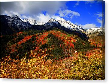 Fall Canvas Print by Mark Smith