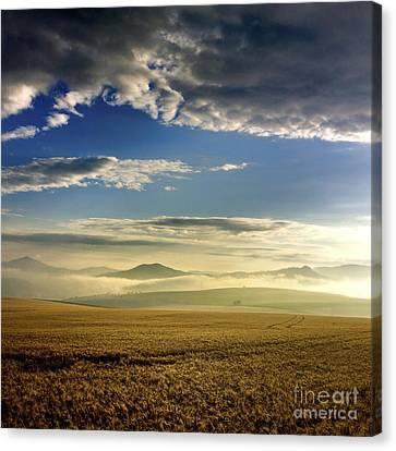 Agricultural Landscape. Auvergne. France. Canvas Print