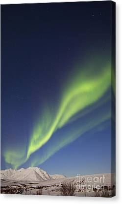 Aurora Borealis With Moonlight Canvas Print by Joseph Bradley