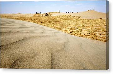 Bales Canvas Print - Desertification Prevention by Thierry Berrod, Mona Lisa Production