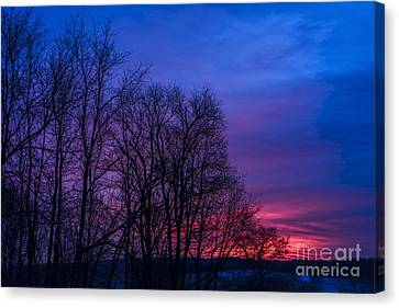 Red Sky At Morning Canvas Print by Thomas R Fletcher