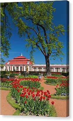 Russia, Saint Petersburg, Peterhof Canvas Print