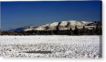 The Bitterroot Valley  Canvas Print by Larry Stolle