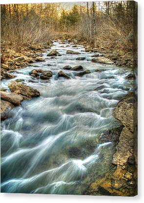 1104-5570 Falling Water Creek  Canvas Print by Randy Forrester