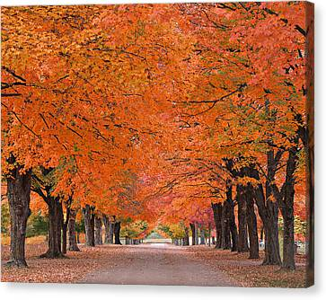 1110-7483 Maplewood Cemetery At Harrision Arkansas Canvas Print by Randy Forrester