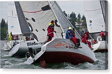 Oak Harbor Canvas Print - 2014 Whidbey Island Race Week by Steven Lapkin