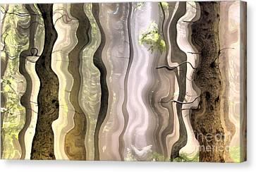 Dream Forest Canvas Print by Odon Czintos