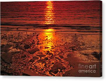 Fine Art Canvas Print