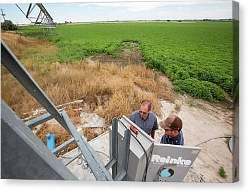 Farm System Canvas Print - Potato Farming by Jim West