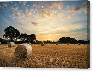 Stunning Summer Landscape Of Hay Bales In Field At Sunset Canvas Print by Matthew Gibson