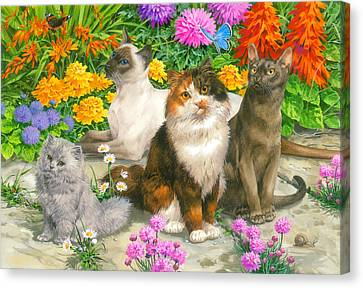 Floral Cats Canvas Print by John Francis