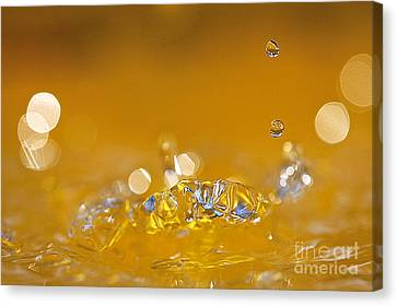 Water Drops Canvas Print by Odon Czintos
