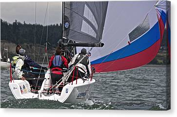 Oak Harbor Canvas Print - Whidbey Island Race Week by Steven Lapkin
