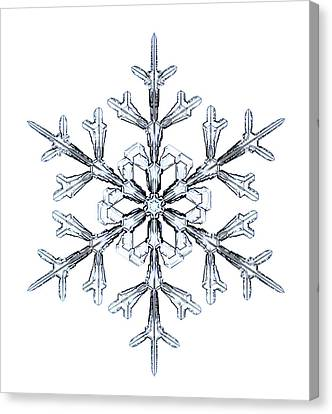 Snowflake Canvas Print by Kenneth Libbrecht