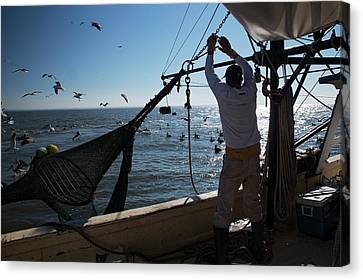 Shrimp Fishing Canvas Print by Jim West