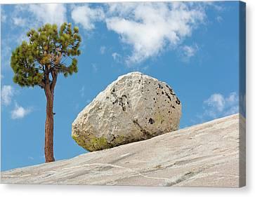 Usa, California, Yosemite National Park Canvas Print