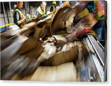Cardboard Canvas Print - Waste Sorting At A Recycling Centre by Peter Menzel