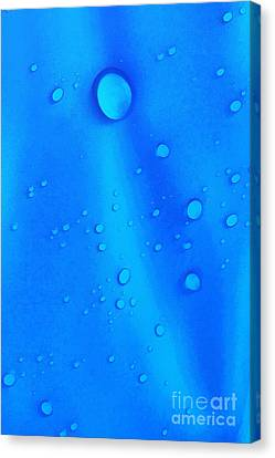 Water Drops Canvas Print