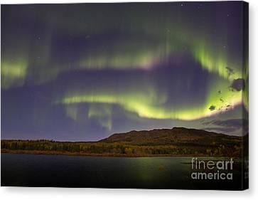 Aurora Borealis With Moonlight At Fish Canvas Print by Joseph Bradley