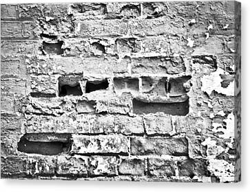 Brick Wall Canvas Print by Tom Gowanlock