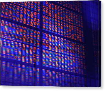 Dna Microarray Canvas Print
