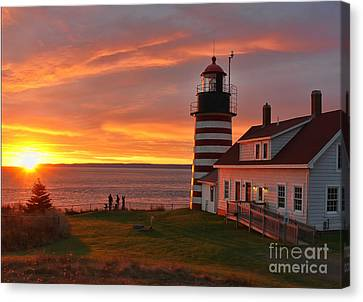 West Quoddy Head Lighthouse 3745 Canvas Print by Jack Schultz