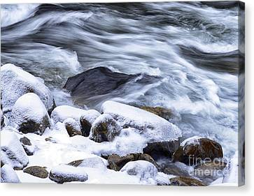 Winter Along Williams River Canvas Print by Thomas R Fletcher