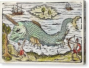 Monoceros Canvas Print - 1582 Sawfish Pristis As Sea Unicorn by Paul D Stewart