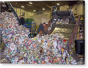 Recycling Plant Canvas Print