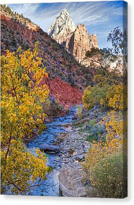 Slickrock Canvas Print - Zion National Park Utah by Utah Images