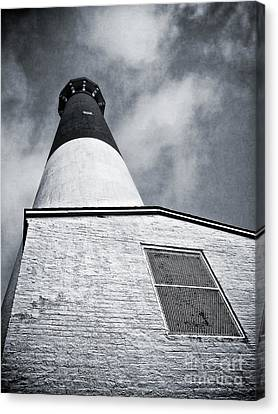 163 Feet Into The Clouds Canvas Print by Mark Miller