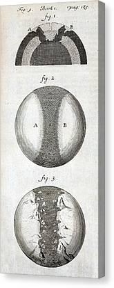 1684 Thomas Burnet Continental Drift Canvas Print by Paul D Stewart