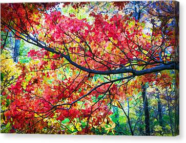 Fall Foliage Great Smoky Mountains Painted Canvas Print by Rich Franco