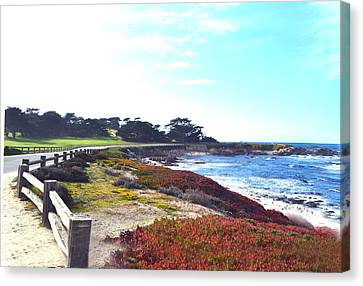 17 Mile Drive Shore Line II Canvas Print by Barbara Snyder