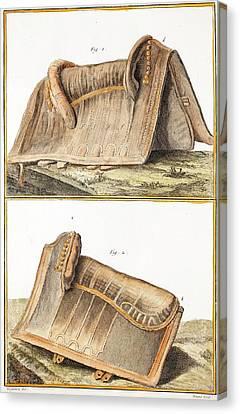 1750 Galapagos Tortoise Saddle Likeness Canvas Print by Paul D Stewart