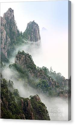 Beauty In Nature Canvas Print by King Wu