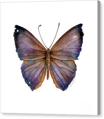 18 Purple Pandemos Canvas Print by Amy Kirkpatrick