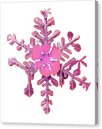 Snowflake Canvas Print by Ars/us Dept Of Agriculture