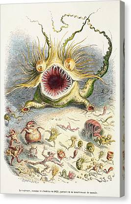 1833 Cholera Pandemic Grandville Cartoon Canvas Print