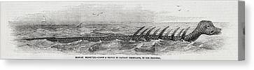 1856 Princess Many-finned Sea Monster Canvas Print by Paul D Stewart