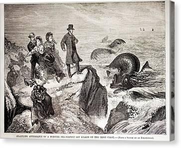 1871 Kilkee Irish Sea Monster Serpent Canvas Print by Paul D Stewart