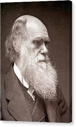1874 Charles Darwin Photograph Portrait Canvas Print by Paul D Stewart