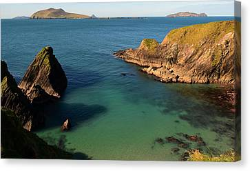 Blasket Islands Canvas Print by Barbara Walsh