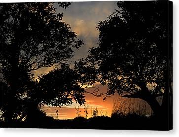 Sunset Canvas Print by Barbara Walsh