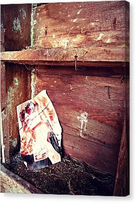 The Blushing Barn Canvas Print by Cyryn Fyrcyd