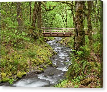 Usa, Oregon, Columbia River Gorge Canvas Print by Jaynes Gallery
