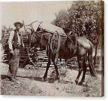 1900 Cowboy Canvas Print by Unknown