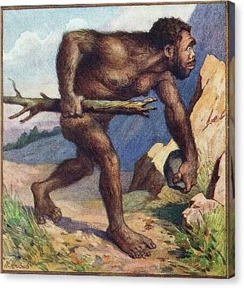 1910 Earliest Colour Neanderthal Print Canvas Print