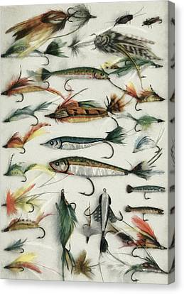 1920's Fishing Flies Canvas Print by Steve Taylor